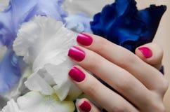 Den härliga kvinnliga handen med rosa färger spikar design arkivbilder