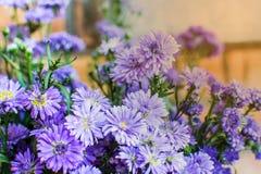 Den härliga lilan blommar med ljus - apelsin arkivfoton