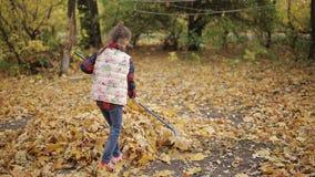 Den härliga lilla flickan gör ren sidorna i använda för gård krattar stock video
