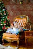 Den härliga lilla flickan sitter på en stol nära en festlig julgran arkivfoton