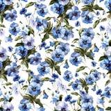 Den härliga n-modellen med blått blommar på vit fon1 Arkivfoto