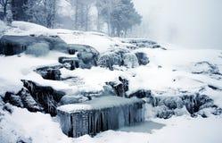 Den härliga och dröm- lika vintern föreställer Royaltyfri Foto