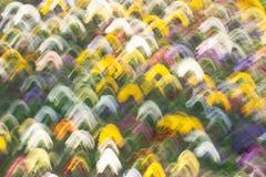 Den härliga oskarpa bakgrunden av färgrika handlag Arkivbild