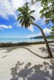 Den härliga paradisstranden, vit sand, turkosvatten, gömma i handflatan, seych Royaltyfri Bild