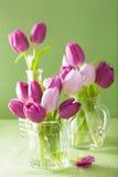 Den härliga purpurfärgade tulpan blommar buketten i vas Royaltyfria Bilder