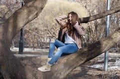 Den härliga ryska flickan med långt hår sitter på ett träd och en smi Arkivfoton