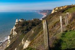 Den härliga sceniska kustlinjen mellan Branscombe Mouth och öl i Devon arkivfoton