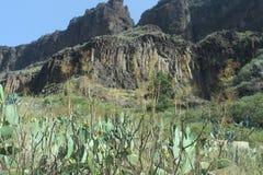 Den härliga sikten av berg piratkopierar in byn, Masca, Tenerife, Spanien Royaltyfria Foton