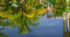 Den härliga sikten av den tropiska trädgården reflekterade i vatten som var uppochnervänt med den rosa flamingofågeln som går i v Royaltyfria Foton