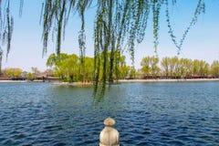 Den härliga sikten av Shichahai under ett trevligt väder Royaltyfria Bilder