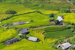Den härliga sikten, risfält terrasserar på Sapa, Vietnam Royaltyfri Bild