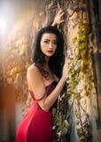 Den härliga sinnliga kvinnan i den röda klänningen som poserar i höstligt, parkerar Ung brunettkvinna som dagdrömmer nära en vägg Royaltyfria Foton