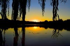 Den härliga solnedgången över parkerar sjön Arkivfoton