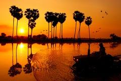 Den härliga solnedgången Arkivbild