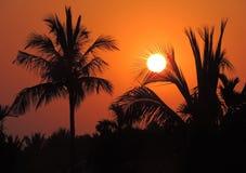 Den härliga solnedgången Royaltyfri Fotografi
