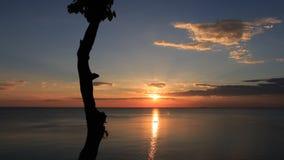 Den härliga solnedgången i vintern Arkivfoton