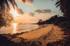 Den härliga solnedgången på den tropiska stranden med gömma i handflatan Arkivbilder