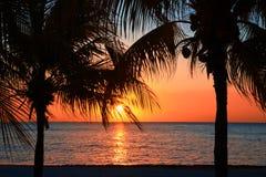 Den härliga solnedgången på stranden, sol går ner till havet till och med två palmträd på bayshoren Omgivande stillhet, vilar och royaltyfria bilder