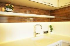 Den härliga solsidolägenheten med enkel minimalistic modern inredesign, öppnar plankökvardagsrum i solljus royaltyfri foto