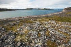 Den härliga sommararktisken landskap med fjärden. Barents hav Arkivbild