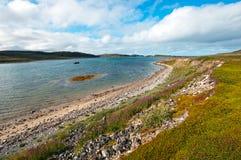 Den härliga sommararktisken landskap med fjärden. Barents hav Arkivbilder