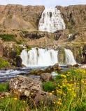 Den härliga sommarsikten av den Dynjandifoss Dynjandi vattenfallet, juvlar av Westfjordsen, Island Fotografering för Bildbyråer