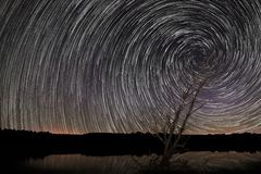 Den härliga spiral stjärnan skuggar över sjön med det gamla trädet Royaltyfri Fotografi