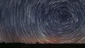 Den härliga spiral stjärnan skuggar över sparat med det ensamma trädet Härlig natthimmel Royaltyfri Foto