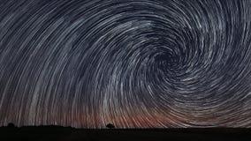 Den härliga spiral stjärnan skuggar över sparat med det ensamma trädet Härlig natthimmel Royaltyfri Fotografi