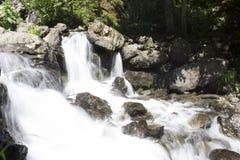 Den härliga tapeten av vattenfallet, den snabba strömmen mjölkar flöde Flod Abchazien för stenigt berg i skogvattenfallmejerit Arkivfoto
