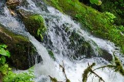 Den härliga tapeten mjölkar strömmen för vattenfallflödesfors Flod Kaukasus för stenigt berg i den skogIsichenko vattenfallet, Gu Royaltyfri Foto