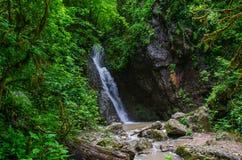 Den härliga tapeten mjölkar strömmen för vattenfallflödesfors Flod Kaukasus för stenigt berg i den skogIsichenko vattenfallet, Gu Arkivbild