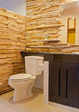 Den härliga toaletten på en semesterort Royaltyfri Fotografi