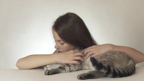Den härliga tonåriga flickan kysser och kramar hennes älskade katt av den thailändska aveln på den vita videoen för bakgrundsmate lager videofilmer