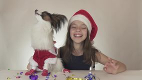 Den härliga tonåriga flickan och hunden kontinentala Toy Spaniel Papillon i Santa Claus dräkter tycker om på den slingrande `en s stock video