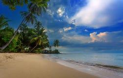 Härlig tropisk strand Arkivbild