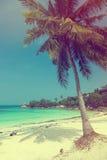 Den härliga tropiska stranden med kokosnöten gömma i handflatan Royaltyfri Foto