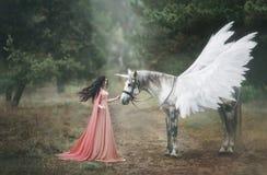 Den härliga unga älvan som går med en enhörning i skogen är hon, iklädd en lång orange klänning med en kappa Den härliga putsa royaltyfri foto