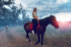 Den härliga unga damen som mycket är trevlig med att massera, sprutar ut på hästrygg Arkivfoto