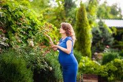 Den härliga unga gravida kvinnan står i sommaren nära en blommande trädgård Royaltyfria Bilder