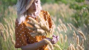 Den härliga unga kvinnan går i fältet samlar en bukett av blommor och spikelets Stående av den attraktiva kvinnlign på gräs på su lager videofilmer