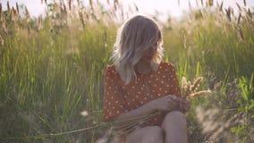 Den härliga unga kvinnan går i fältet samlar en bukett av blommor och spikelets Stående av den attraktiva kvinnlign på gräs på su arkivfilmer