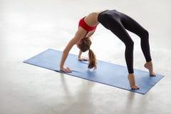 Den härliga unga kvinnan som gör yogaövningsbron, poserar Royaltyfri Bild