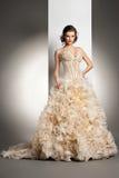 Den härliga unga kvinnan i en bröllopsklänning Royaltyfria Bilder
