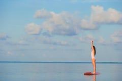 Den härliga unga kvinnan som surfar på, står upp skoveln Royaltyfri Fotografi
