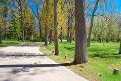 Den härliga vägen med kurvor längs parkerar arkivbilder