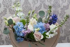 Den härliga våren blommar för mars 8 Arkivbilder