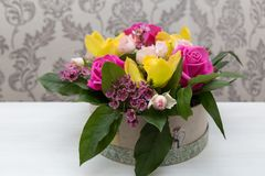Den härliga våren blommar för mars 8 Fotografering för Bildbyråer