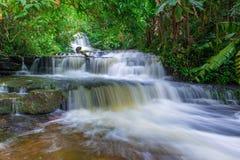 den härliga vattenfallet i rainforest på phuen badar berkbergphet arkivbild