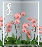 Den härliga vektorillustrationen på en tema8 mars, den internationella dagen för kvinna` s, vår, blommar Royaltyfria Foton